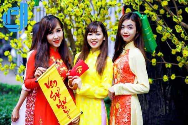 Du lịch Hải Phòng Đà Nẵng chiêm ngưỡng chợ hoa khoe sắc ngày Tết
