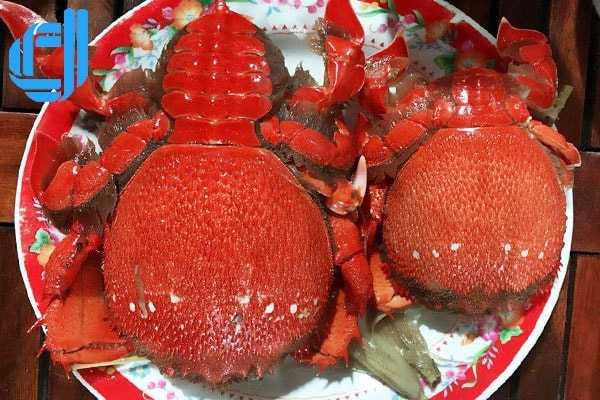 Du lịch Hải Phòng Đà Nẵng không thể không nhắc tới hải sản tươi